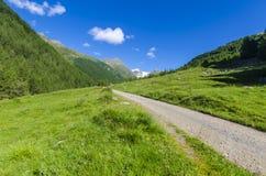 Дорога в высокогорном ландшафте лужка высоких гор на ясном лете, солнечном дне. Стоковое Изображение RF