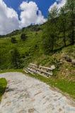 Дорога в высокогорном ландшафте лужка высоких гор на ясном лете, солнечном дне. Стоковая Фотография RF