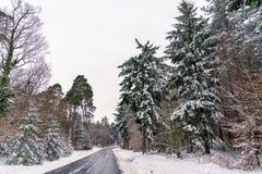 Дорога в горах Вогезы в зиме Отдел Bas-Rhin Франции Стоковые Фотографии RF