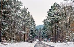 Дорога в горах Вогезы в зиме Отдел Bas-Rhin Франции Стоковые Фото