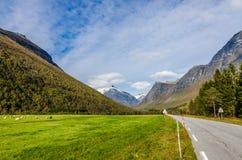 Дорога в горе стоковое фото