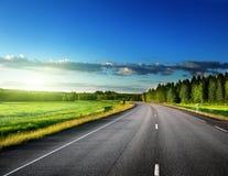 Дорога в глубоком лесе Стоковая Фотография RF