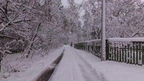 Дорога в деревне, падения зимы снега от ветвей сток-видео