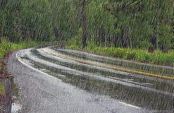 Дорога в лесе в дожде Стоковое фото RF