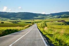 Дорога в лете Стоковая Фотография