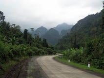 Дорога в джунглях (Вьетнам) Стоковое Изображение