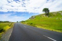 Дорога в зеленых холмах, полуостров coromandel, Новая Зеландия 10 Стоковое фото RF
