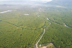 Дорога в зеленом лесе мангровы на заливе Phang Nga южном t Стоковая Фотография