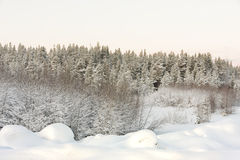 Дорога в зиме на зоре Стоковое фото RF