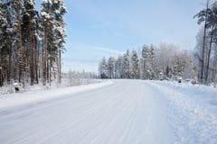 Дорога в зиме стоковое изображение rf