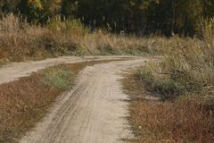 Дорога в лесе водит к себе, концу-вверх иллюстрация вектора
