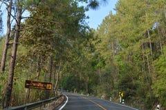 Дорога в лесе гор Таиланда Стоковые Фотографии RF
