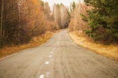 Дорога в лесе осени чуть-чуть желтые деревья и дорога выходя за поворотом Стоковая Фотография