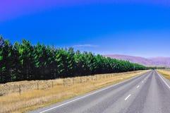 Дорога в Новой Зеландии Стоковые Фото