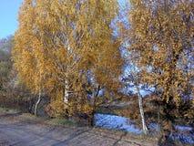 Дорога в осени Стоковое Изображение