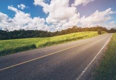 Дорога вдоль зеленой травы Стоковое Изображение RF