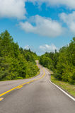 Дорога в парке Стоковое Фото