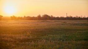 Дорога в поле на выравнивать заход солнца стоковое фото