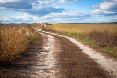 Дорога в полях осени Стоковая Фотография