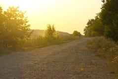 Дорога в поле Стоковое Изображение RF