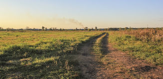 Дорога в поле Стоковая Фотография RF