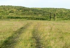 Дорога в поле стоковое фото rf