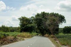 Дорога в природе под голубым небом Стоковая Фотография RF