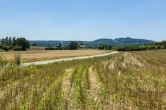 Дорога в равнине Стоковая Фотография RF