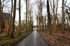 Дорога в древесине к замку где-то в Нидерландах Стоковое Изображение RF