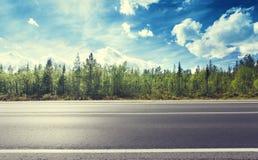 Дорога в северном лесе стоковая фотография