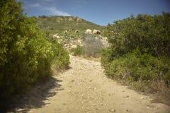 Дорога в середине среднеземноморской вегетации Стоковые Фото