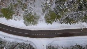 Дорога в снежном лесе видеоматериал