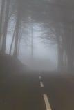 Дорога в тумане в облаке в горах острова Мадейры, Португалии Стоковое Фото