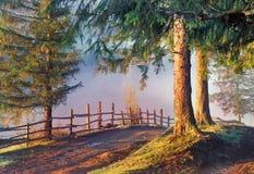 Дорога в тумане утра Стоковая Фотография RF