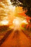 Дорога в тумане b осени Стоковая Фотография RF