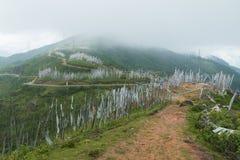 Дорога в холме, paro, Бутан Стоковая Фотография