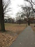 Дорога в Central Park в Нью-Йорке Стоковое Фото