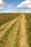 дорога горизонта к стоковое фото