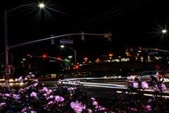 Дорога города ветреной ночи занятая Стоковые Фотографии RF