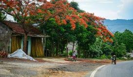 Дорога горы в Mai Chau, северном Вьетнаме Стоковое фото RF