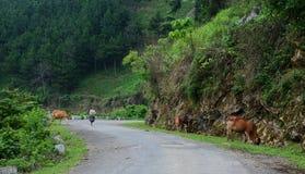 Дорога горы в Mai Chau, северном Вьетнаме Стоковое Изображение