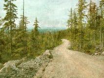 дорога горы грубая Стоковые Фото