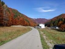 дорога горы к Стоковые Фотографии RF