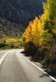 Дорога горы падения Стоковое фото RF