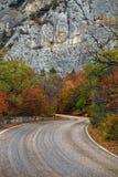 Дорога горы через древесины осени Стоковая Фотография