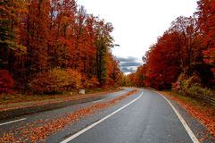 дорога горы Стоковые Фотографии RF