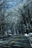 дорога горы icey Стоковое Изображение