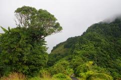 Дорога гор от Penville к Портсмуту Стоковое Изображение