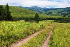 дорога гор страны Стоковое фото RF