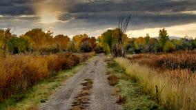 Дорога гравия в октябре стоковые изображения rf